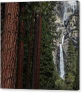 Waterfall Of Pines Canvas Print
