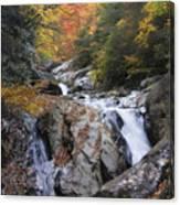 Waterfall Off Blue Ridge Parkway Canvas Print