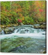 Waterfall On Little Pigeon River Smoky Mountains Canvas Print