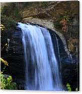 Waterfall On The Cliff Edge Canvas Print