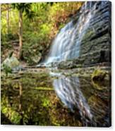 Waterfall Reflections Canvas Print