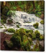 Waterfall Reverie Canvas Print