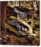 Waterfall Through The Trees Canvas Print