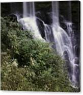 Waterfall Wildflowers Canvas Print