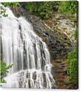 Waterfall With Green Leaves Canvas Print