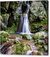 Waterfall. Canvas Print