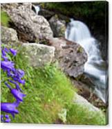 Waterfalls And Bluebells Canvas Print