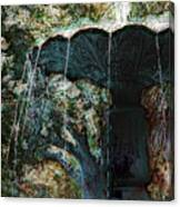 Waterfountain In Charleston Park Canvas Print