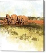 Waterhole - Addo National Park  Canvas Print
