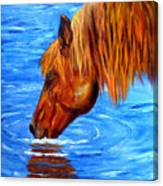 Watering Hole Horse Painting Canvas Print
