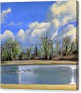 Watering Hole with Geese Canvas Print