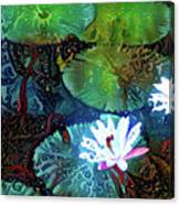 Waterlilies 19 Canvas Print