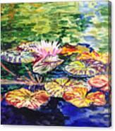 Waterlilies Impressionism Canvas Print