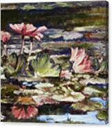 Waterlilies Tower Grove Park Canvas Print
