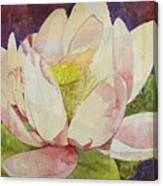 Waterlily Collage Canvas Print