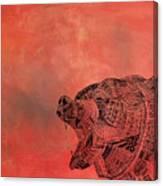 Watermelon Bear Canvas Print