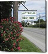 Watermelon Horse Wash Canvas Print