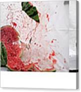 Watermelon Progression Canvas Print