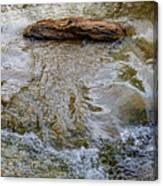 Watermovementstudy 1.1 Canvas Print