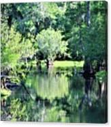 Waterscape #1 Hillsborough River Canvas Print