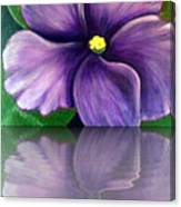Watery African Violet Reflection Canvas Print