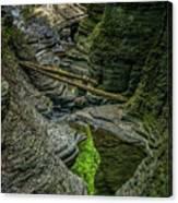 Watkins Glen State Park New York_dsc9599_16 Canvas Print
