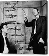 Watson And Crick Canvas Print