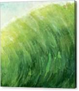 wave IV Canvas Print