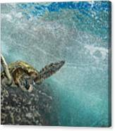 Wave Rider Turtle Canvas Print