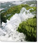 Wave Splash On The Green Rock Canvas Print