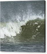 Wave Study Canvas Print