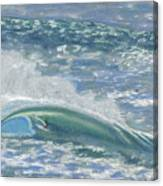 Waverider Canvas Print