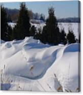 Waves Of Snow Canvas Print