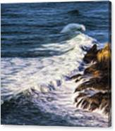 Waves Rocks And Birds Canvas Print