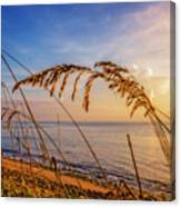 Waving In The Salty Breeze Canvas Print