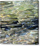 Wawona Ripples 3 Canvas Print