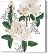 Wax Roses Canvas Print