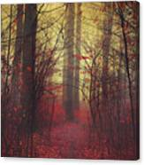 Way In Canvas Print
