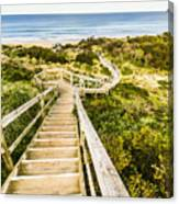Way To Neck Beach Canvas Print