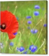We Will Remember Them Canvas Print