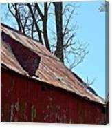 Weathered Barn Roof- Fine Art Canvas Print