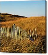 Weathered Dune Fence. Canvas Print