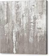 Weathered Metal Canvas Print