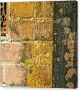 Weathered Wall Canvas Print