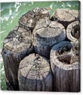 Weathered Wood Pier Posts In Lake Michigan Canvas Print