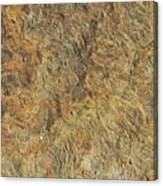Weathered Yorkstone Paving Canvas Print