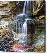 Webwood Falls Canvas Print