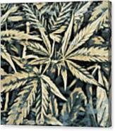 Weed Abstracts Four Canvas Print