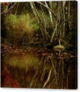 Weeping Branch Canvas Print