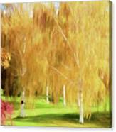 Weeping White Birch Canvas Print